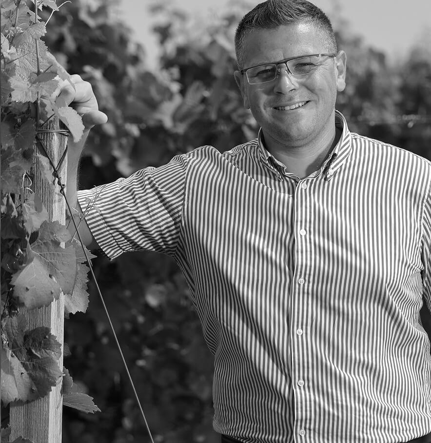 Pécsinger szőlőbirtok